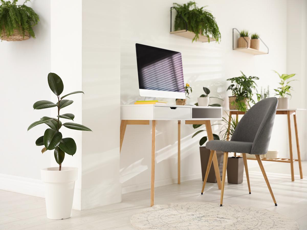 Come gestire le tue sedi in modo efficiente grazie a Cloudya