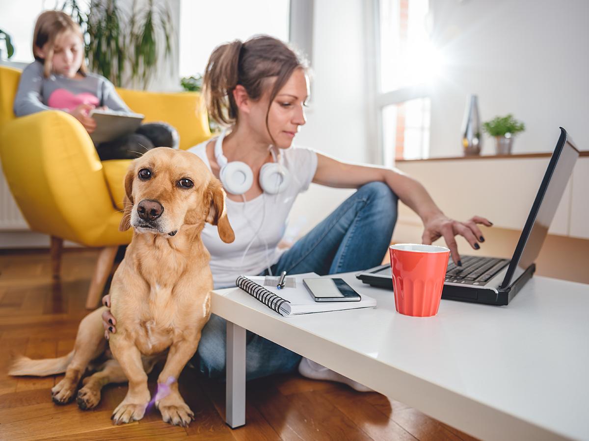 Stress e ansia da smart working? Così l'azienda può dare supporto