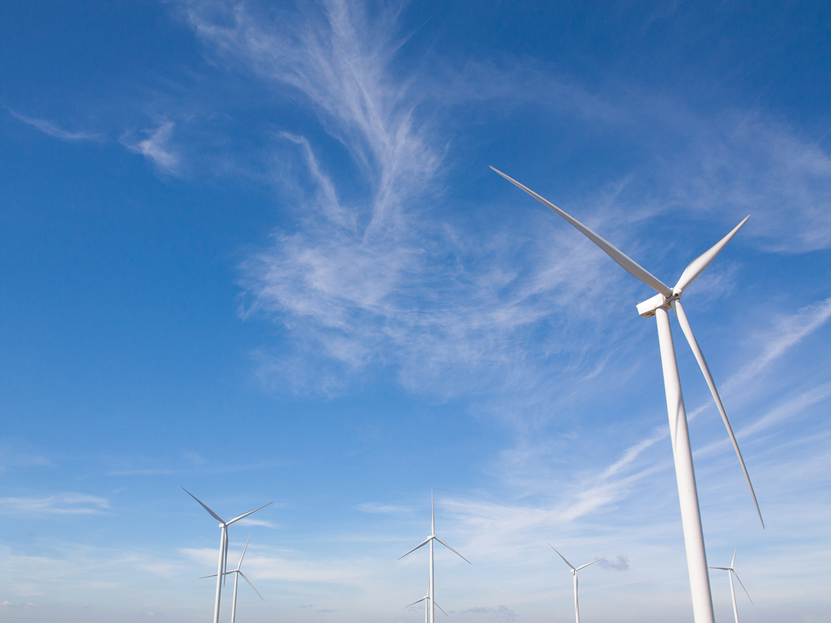 Green Economy: che cos'è, come funziona e perché ne abbiamo bisogno