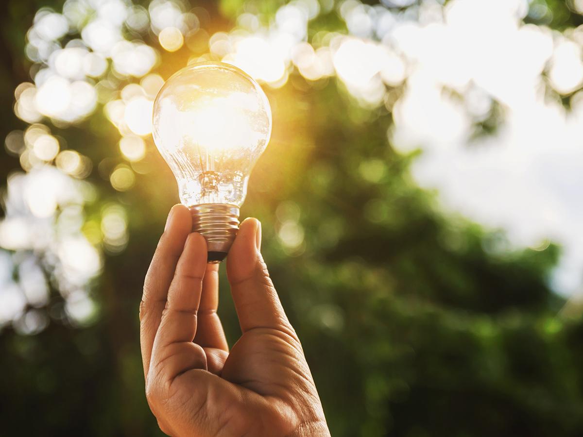 Visioni di sostenibilità: ecco i Ted Talk da non perdere